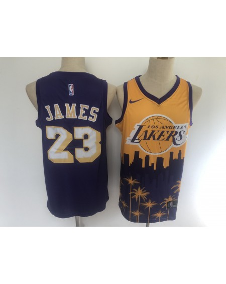 James 23 Los Angeles Lakers Cod.415