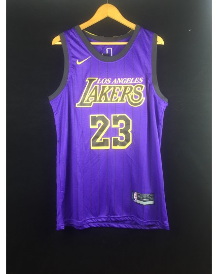 James 23 Los Angeles Lakers Cod.418