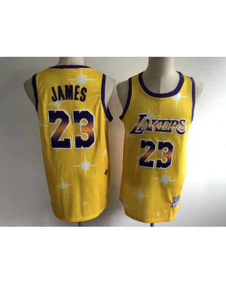 James 23 Los Angeles Lakers Cod.419